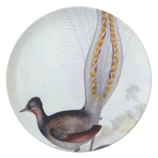 Lyre-Vogel-Vintage Plakat-Platte Flacher Teller