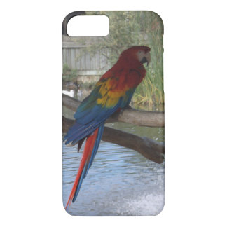 Macaw IPhone Fall iPhone 8/7 Hülle