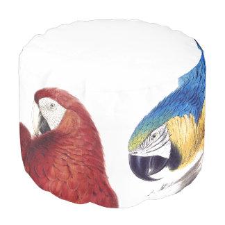Macaw-Papageien-Vogel-Tier-Tier-Puff-Kissen Hocker