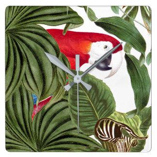 Macaw-Papageien-Vogel-Tier-Tier-Wanduhr Quadratische Wanduhr
