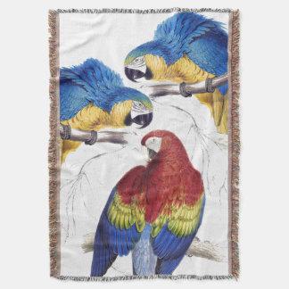 Macaw-Papageien-Vogel-Tier-TierWurfs-Decke Decke