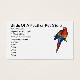 Macaw-Papageien-Vogel-züchtender Visitenkarte