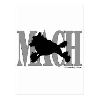 MACH Pudel Postkarte