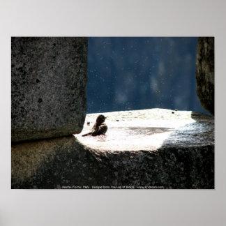 Machu Picchu, Peru, Birdbath im Steinfenster Poster
