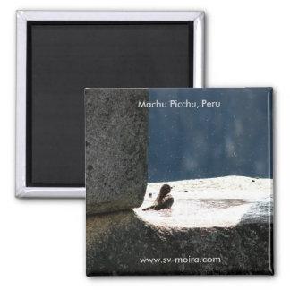 Machu Picchu, Peru, Birdbath im Steinfenster Quadratischer Magnet
