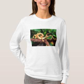 Macleays Erscheinung (Spiney Stock-Insekt), T-Shirt