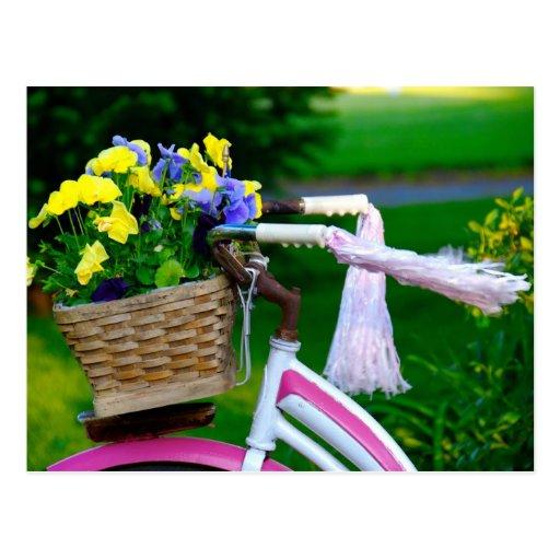Mädchen wollen gerade, um Spaß, rosa Mädchen-Fahrr Postkarten