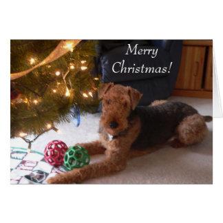 """Maddie sagt, """"frohe Weihnachten! """" Grußkarte"""