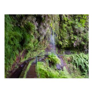 Madeira - Levada tun Rei Postkarte