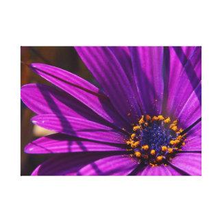 Magentarote Blumen-Nahaufnahme Galerie Falt Leinwand