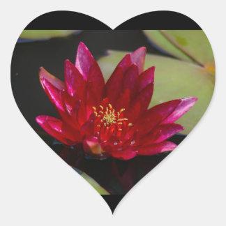 Magentarote Lotos-Wasserlilie Herz-Aufkleber