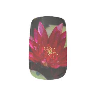 Magentarote Lotos-Wasserlilie Minx Nagelkunst