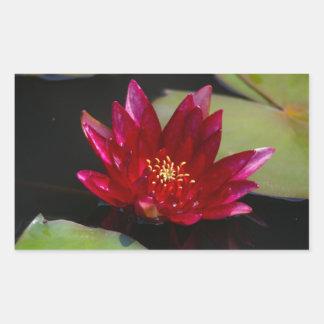 Magentarote Lotos-Wasserlilie Rechteckiger Aufkleber