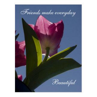 Magentarote Tulpe-Freund-Postkarten Postkarte