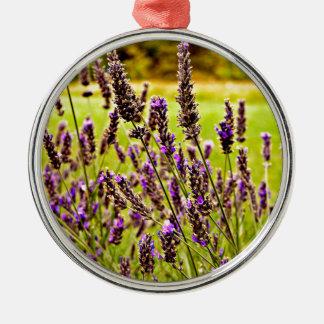 Magic Lavender Silbernes Ornament