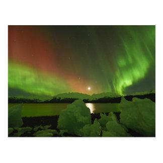 Magische Aurora Postkarte