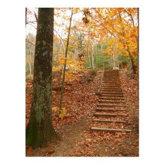 Magische hölzerne Treppe Postkarte
