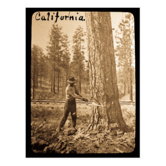 Magische Laterne, die das Butte-Tal, CA anmeldet Postkarte