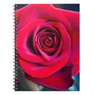 Magische Rose Spiral Notizblock