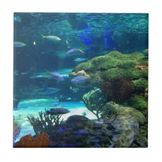 Magisches Korallenriff Kleine Quadratische Fliese