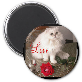 Magnet der Liebe-Katzen-II - kundengerecht Kühlschrankmagnet