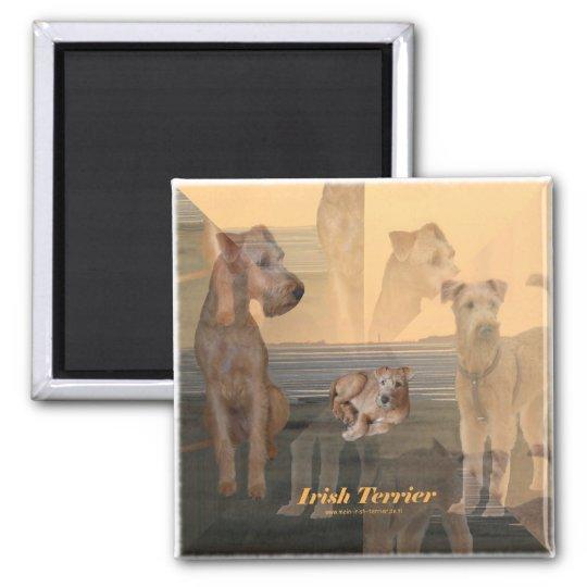 """Magnet """"Irish Terrier"""" Quadratischer Magnet"""