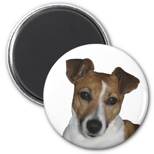 Magnet, rund, Jack Russell Terrier Runder Magnet 5,7 Cm