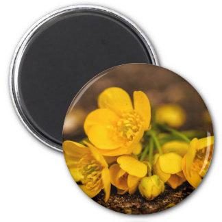 Magnetische Blume Runder Magnet 5,7 Cm