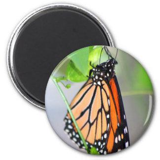 Magnifico Monarchmagnet Runder Magnet 5,7 Cm