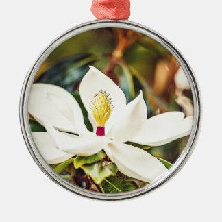 Magnolie in der Blüte Silbernes Ornament