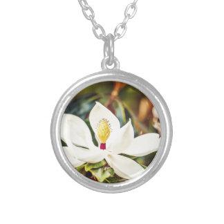 Magnolie in der Blüte Versilberte Kette