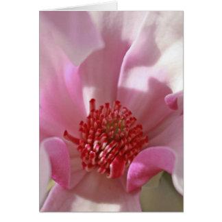 Magnolie Mitteilungskarte