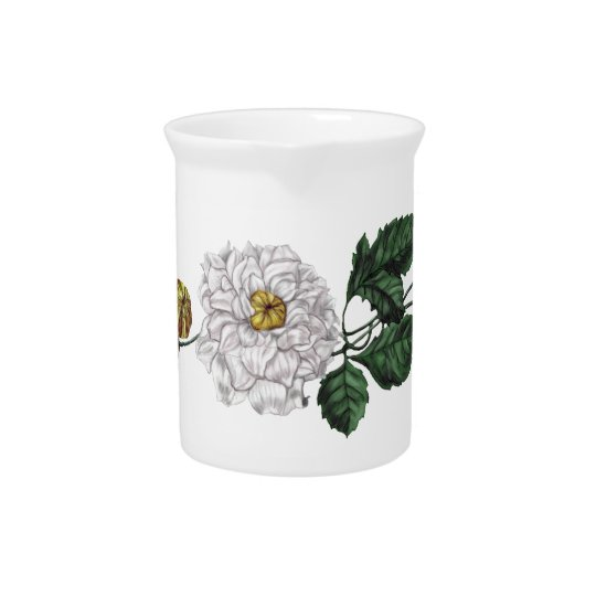 Magnolien-Blüte Krug