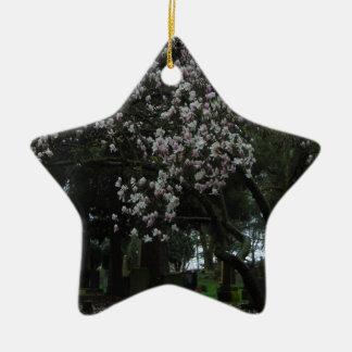 Magnolien für immer keramik Stern-Ornament
