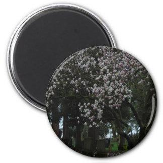 Magnolien für immer runder magnet 5,1 cm