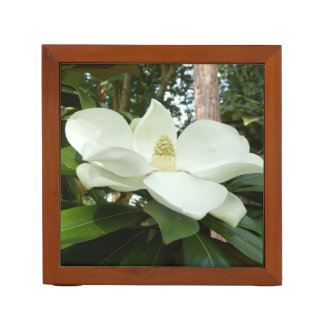 Magnolien-Grandifloraschreibtisch-Organisator Stifthalter