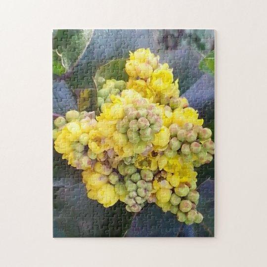 Mahonie 28 cm x 35,6 cm Fotopuzzle mit Geschenkbox