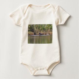Maine-Kuh-Elche Baby Strampler