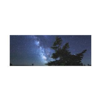 Maine-nächtlicher Himmel Leinwanddruck