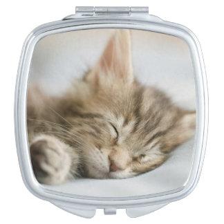 Maine-Waschbär-Kätzchen-Schlafen Taschenspiegel