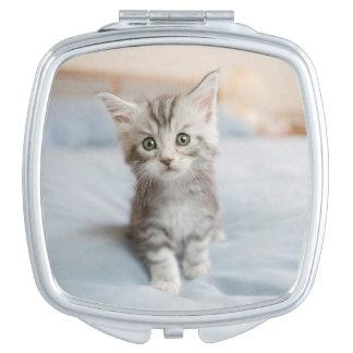 Maine-Waschbär-Kätzchen Taschenspiegel