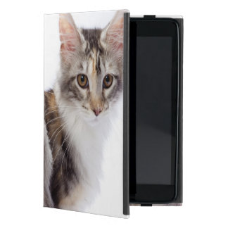 Maine-Waschbärkatze iPad Mini Schutzhüllen
