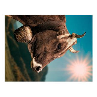 Majestätische Kuh-Postkarte Postkarte