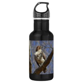 Majestätischer Falke Edelstahlflasche