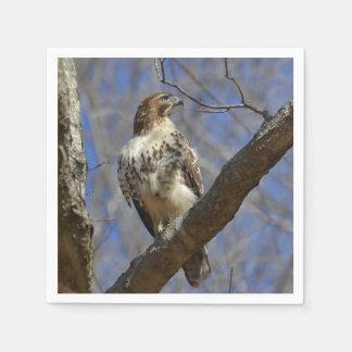 Majestätischer Falke Serviette
