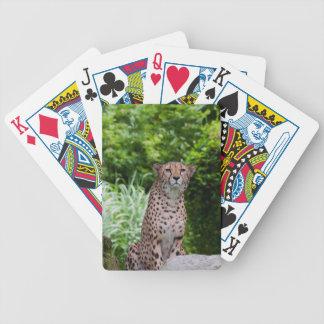 Majestätischer Gepard Bicycle Spielkarten