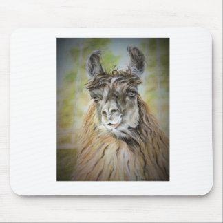 Majestätisches Lama Mousepad
