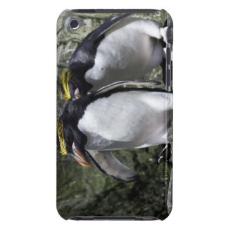 Makkaroni-Pinguine, Südgeorgia iPod Touch Case
