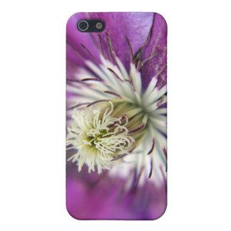 Makro lila Clematis-Blume Hülle Fürs iPhone 5