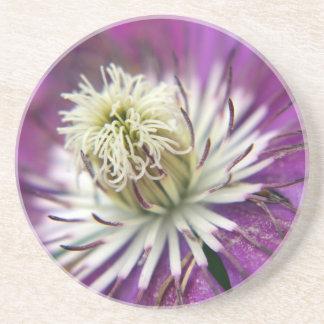 Makro lila Clematis-Blume Untersetzer